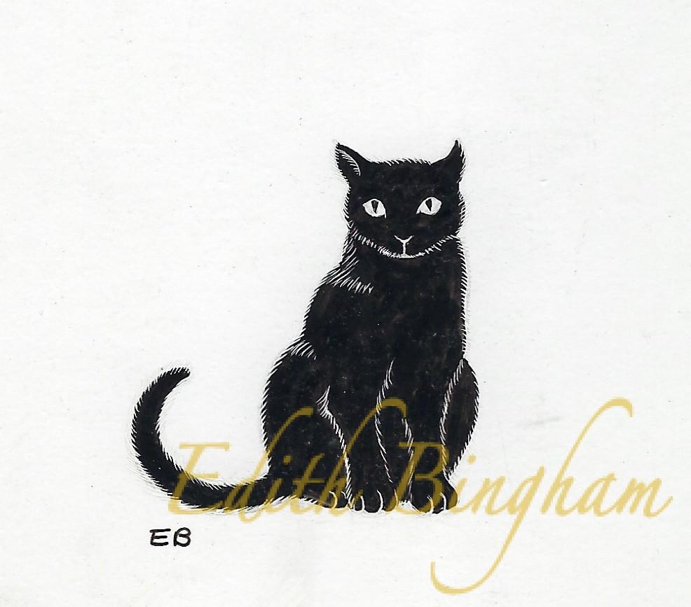 """""""Black Cat"""""""