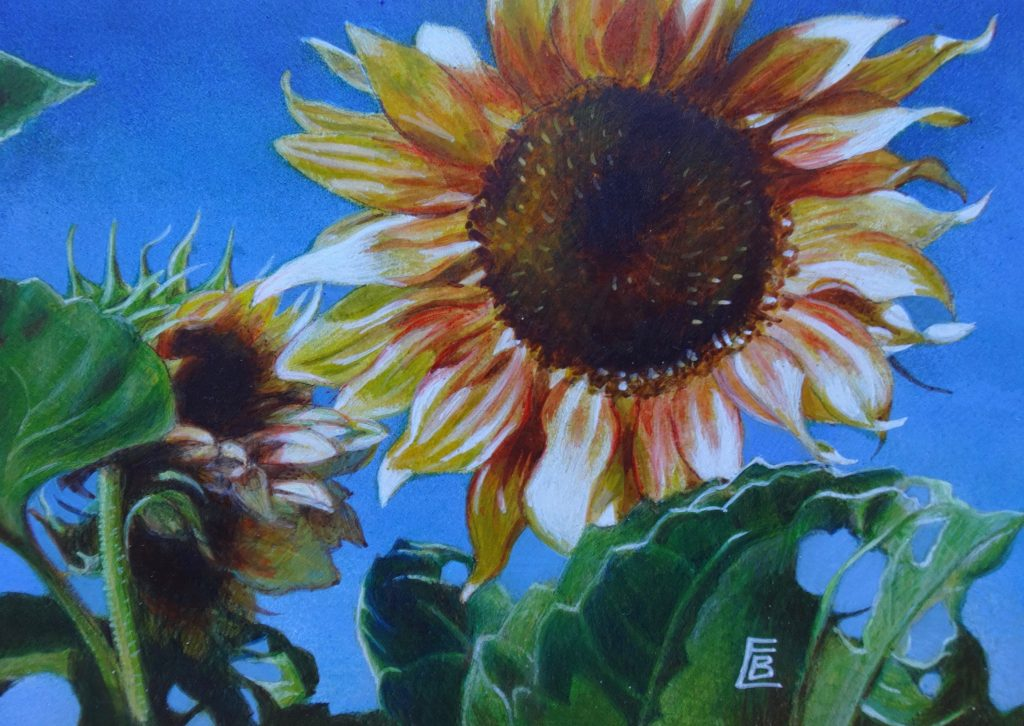 """Shana's Sunflowers"", 5x7, egg tempera"